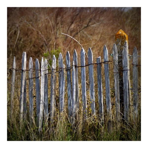 En guise de clôture...