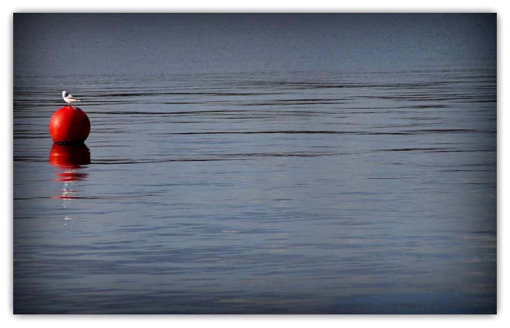 Ligne de flottaison.