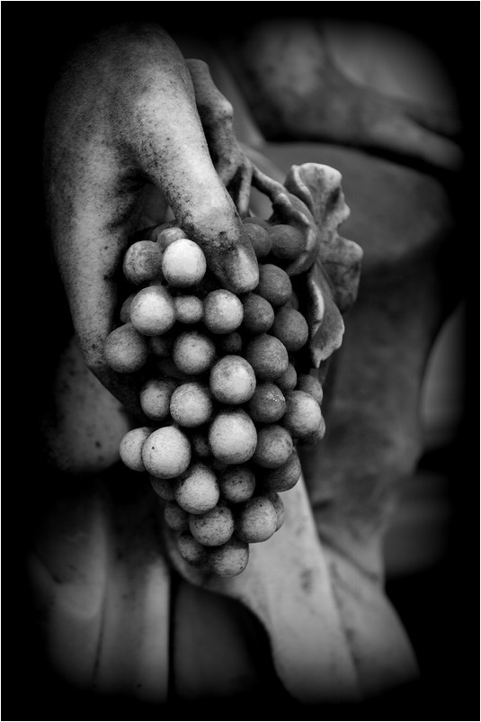 Les fruits défendus...
