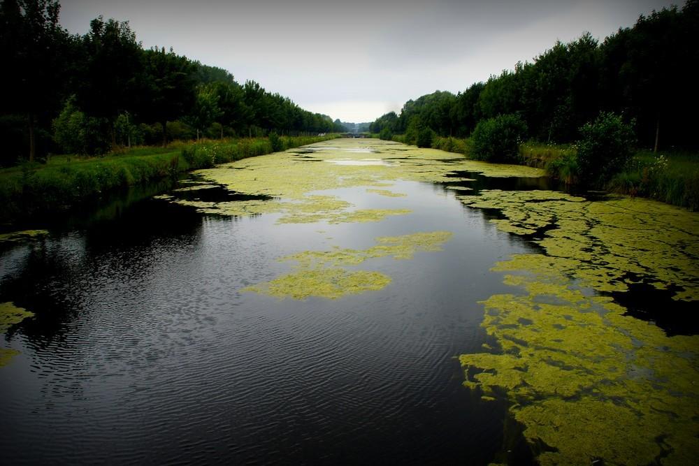 Les couleurs du canal...