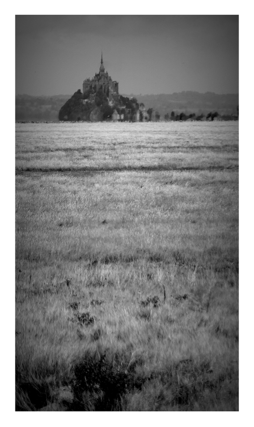 Les plaines du Mont...