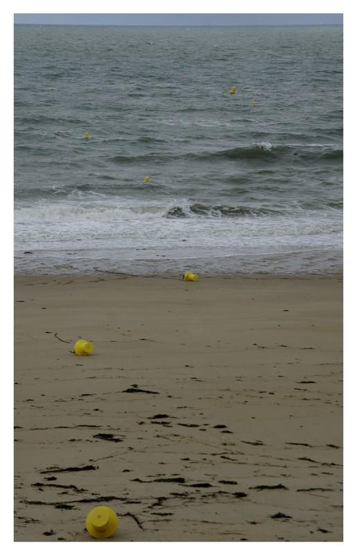 Au rythme des marées...(2)
