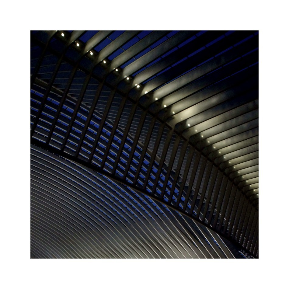Liège-Guillemins...by night.