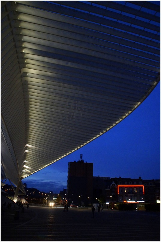 Liège-Guillemins...by night.(3)