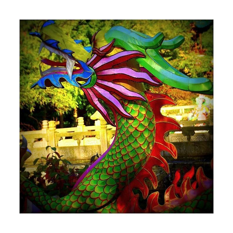 Le dragon de papier...