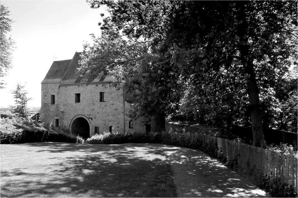 Mons - Château des comtes du Hainaut - 1