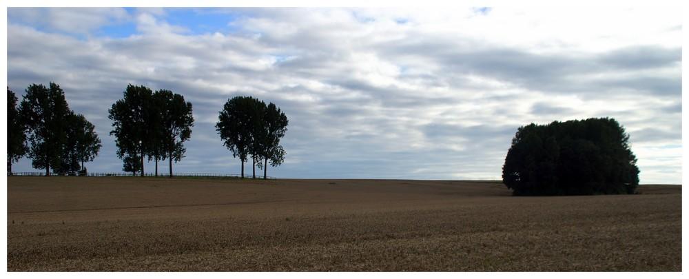 paysage d'août...
