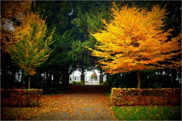 Quiétude d'automne...