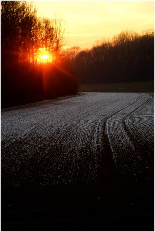 Crépuscule d'hiver...