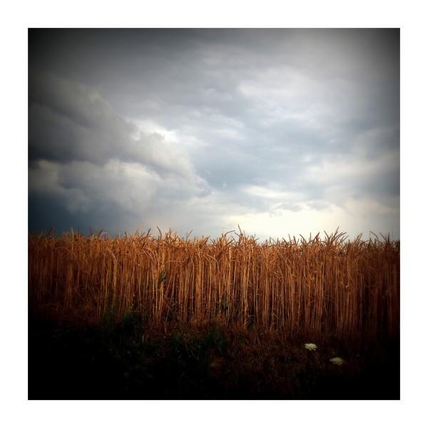 L'orage gronde...