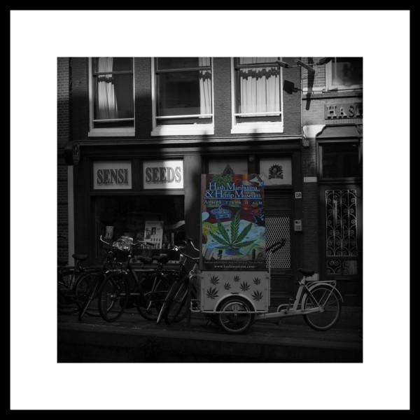 à Amsterdam...(3)