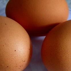 on ne fait pas d'omelette sans casser des oeufs...