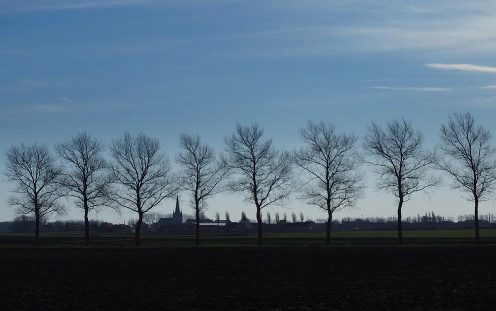 Westhoek...Paysage de Flandre...