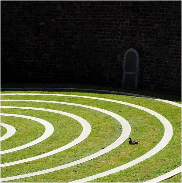 The circles...