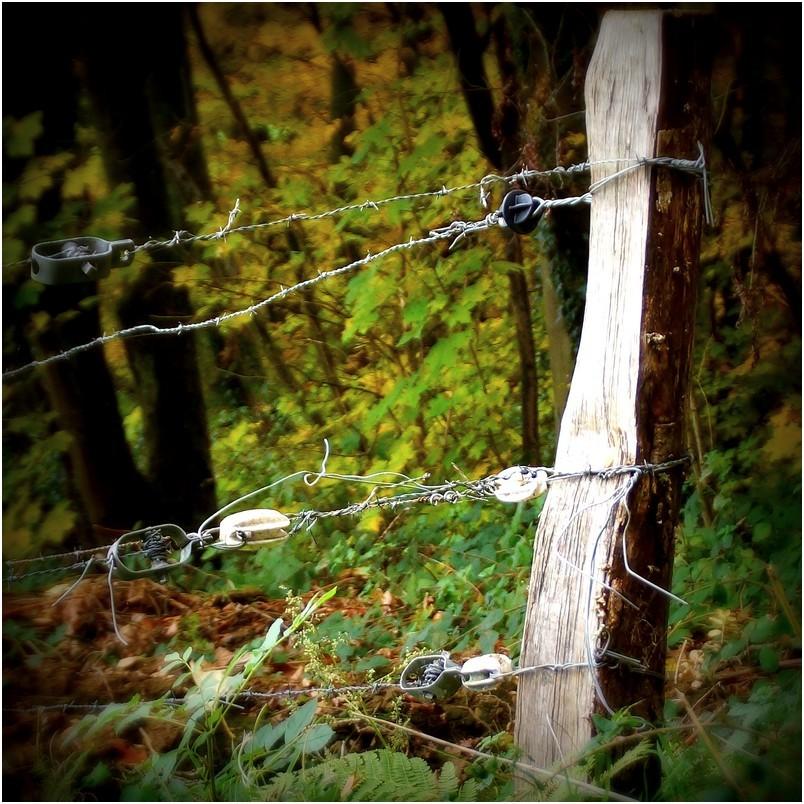 détails de clôture...