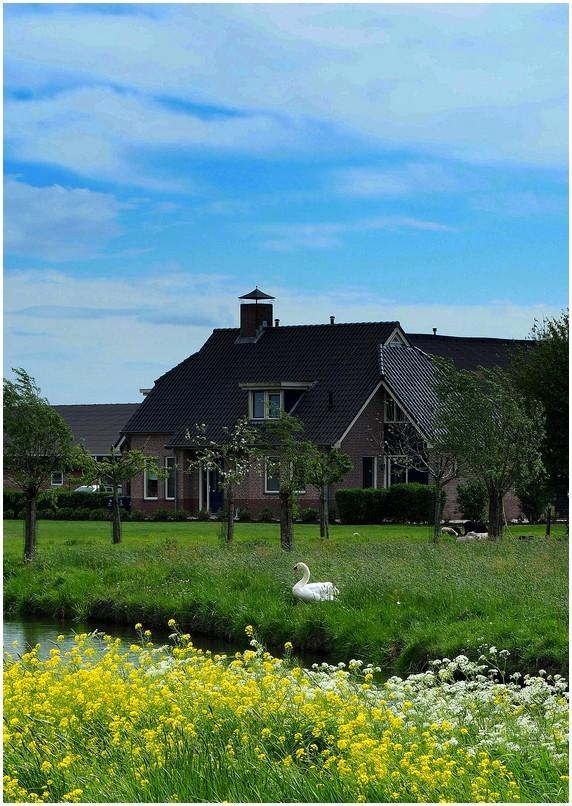 Les polders...(2)