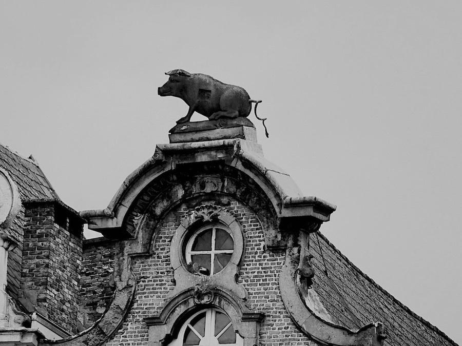 belgium,flanders