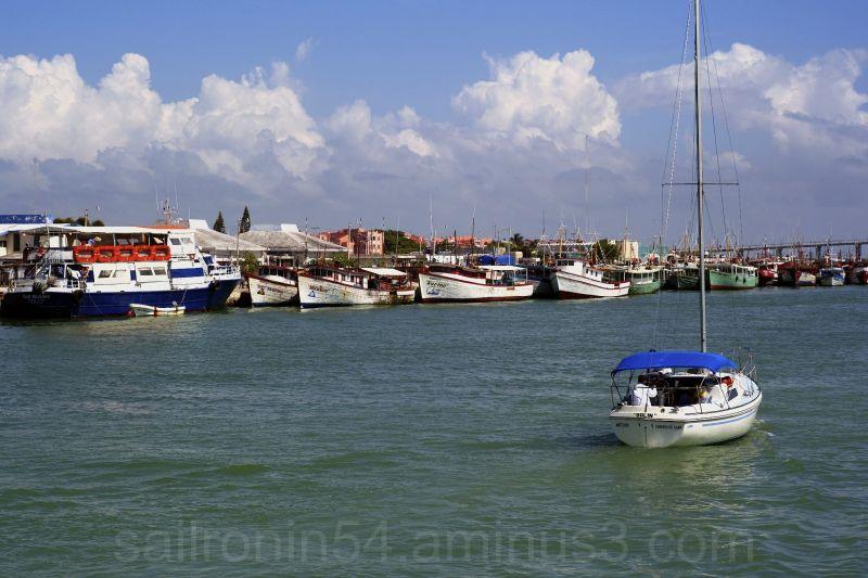 sailboat passing fishing fleet in Progresso, MX
