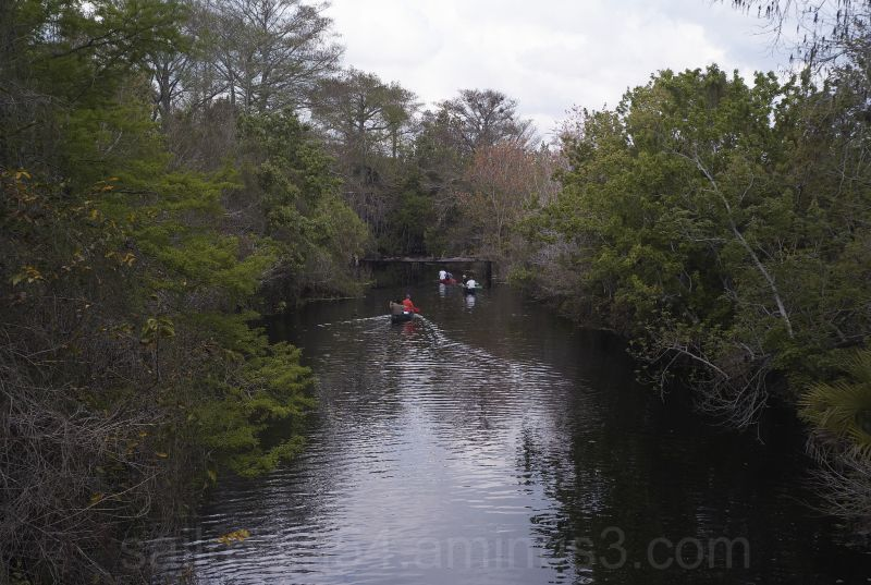 Canoes on the Loxahatchee River