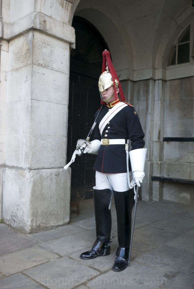 Famous Horse Guard, palace calvary, London