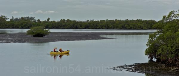 Yellow kayak paddles through the mangrove islands
