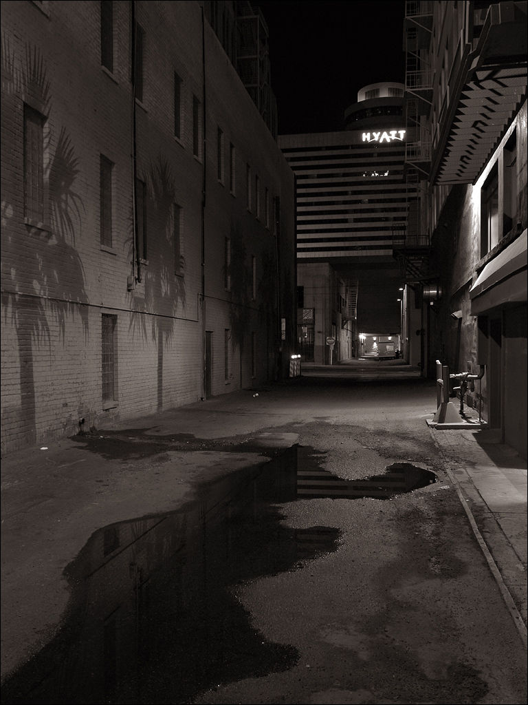 Back-alley Oasis