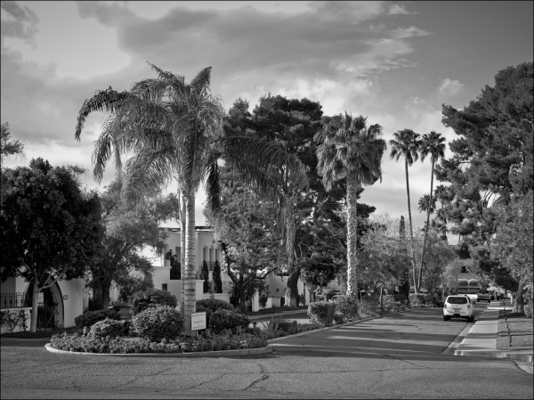 Royale Gardens, No. 8