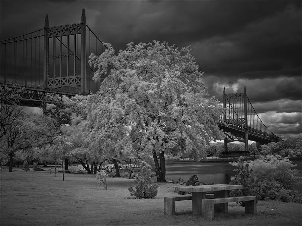 fuji x-pro1 nyc new york triborough bridge