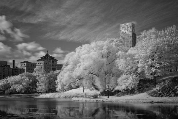 Harlem Meer fuji x-pro1 nyc new york central park