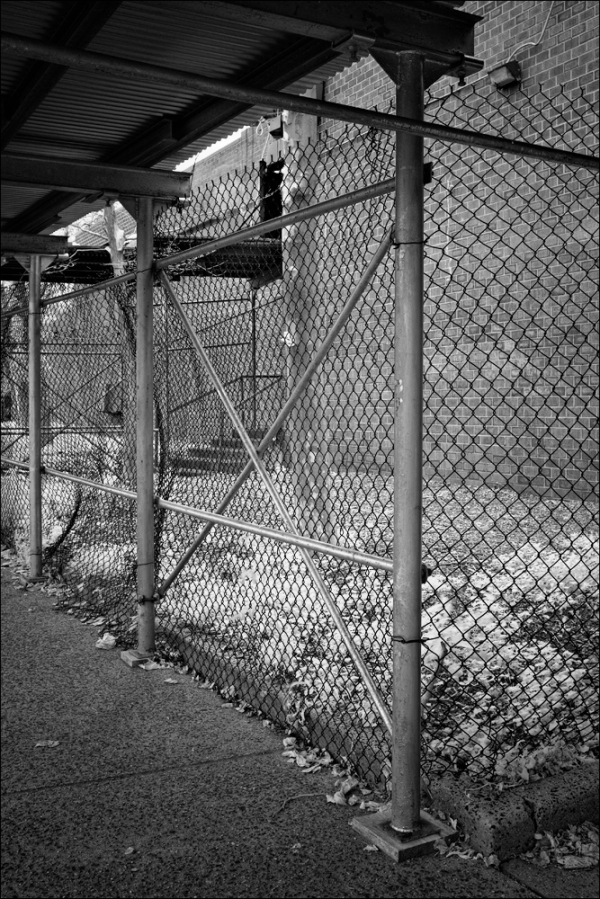 Fence and Scaffolding