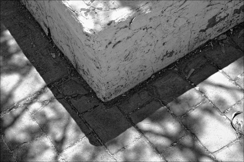 Planter Box & Shadows