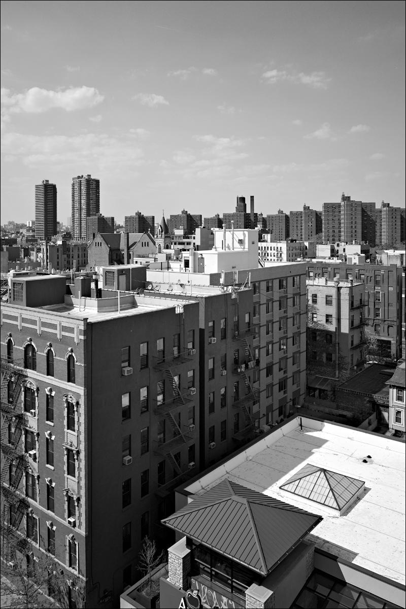 Harlem skyline