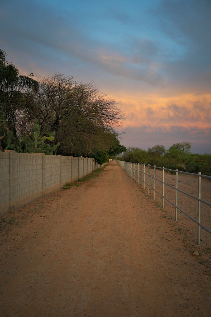 Horse trail at sunset, No. 3