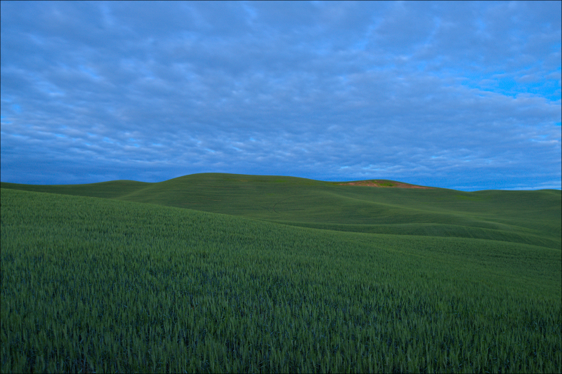 My homage to Microsoft's Bliss screensaver...