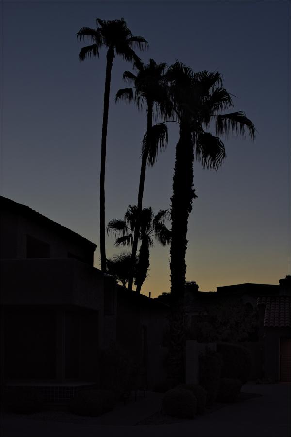 Sunrise this past Sunday morning...