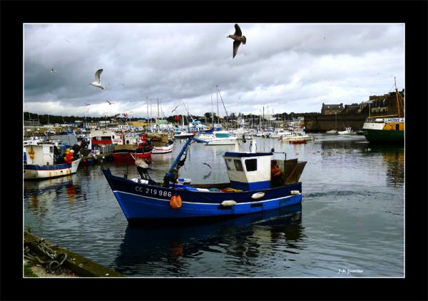 Concarneau Finistere Bretagne port bateau