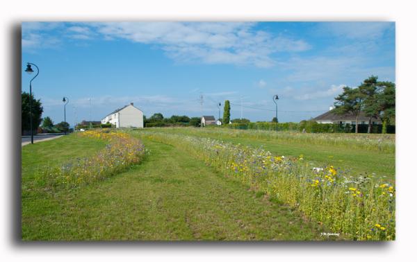 Flamandville Cotentin France
