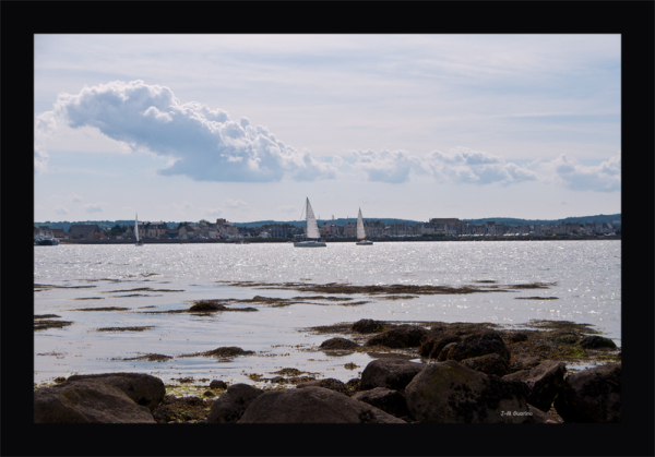 Saint-Vaast-la-Hougue Ile Tatihou Manche France
