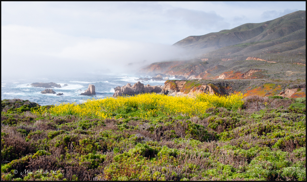 Fog along Big Sur Coast