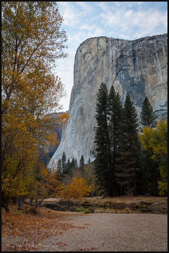El Capitan and Fall Color in Yosemite