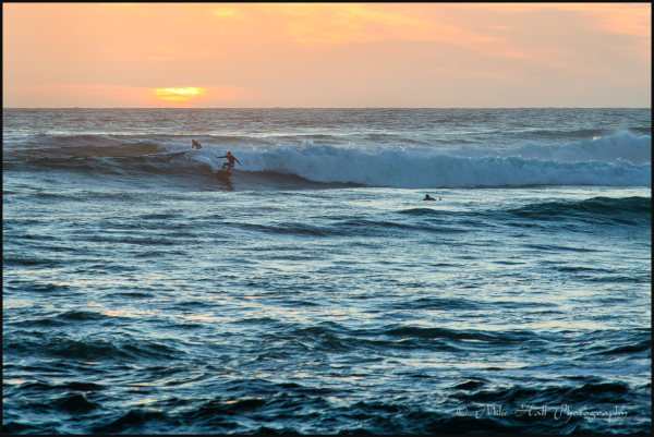 Surfer off the California Coast