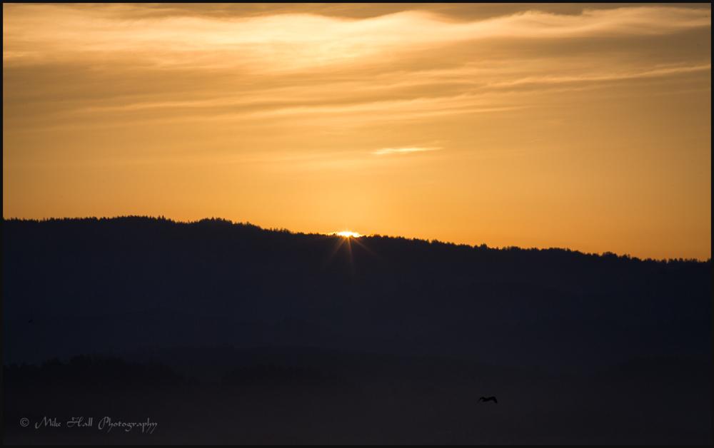 Half Moon Bay Sunrise