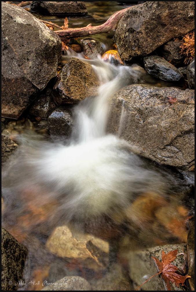 Fall Color and Bridal Veil Creek in Yosemite NP