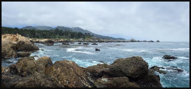 View towards Bird Island in Point Lobos State Pk