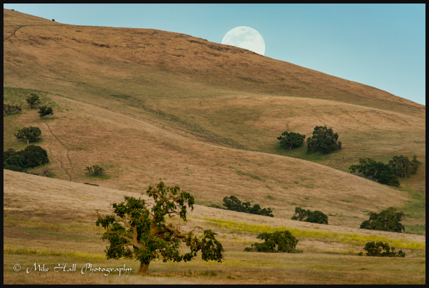 Hollister Hills Moonrise