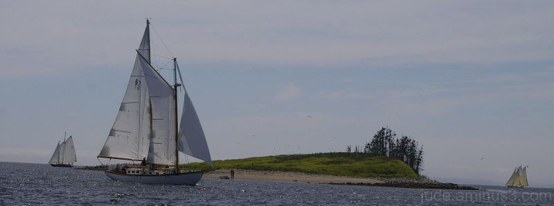 Schooner Race Week 2011 - #2