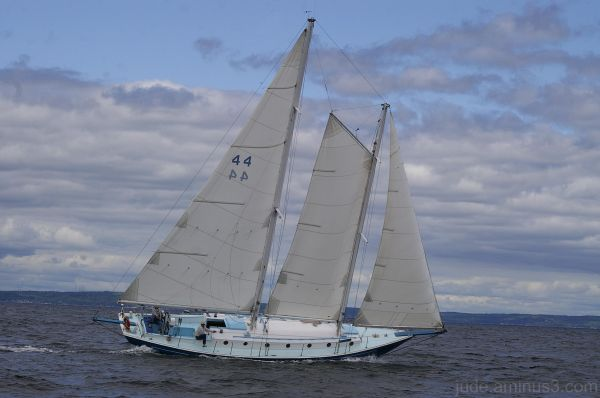 Schooner Race Week #18