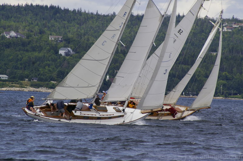 Schooner Race Week #21
