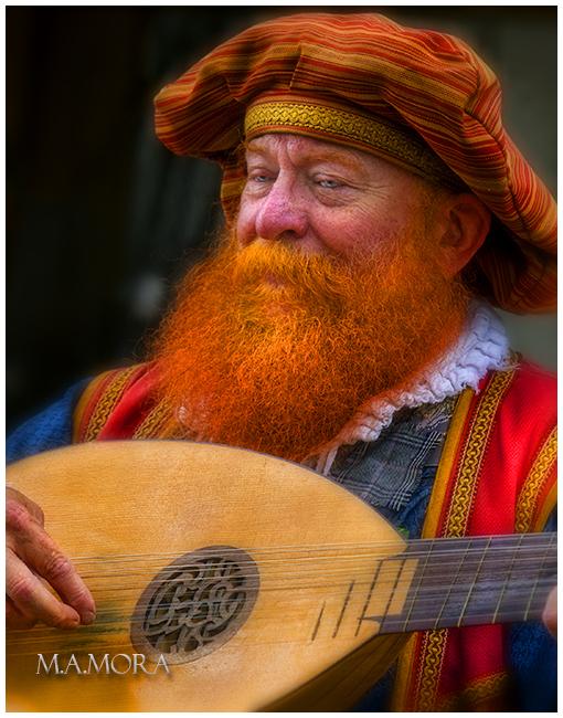 The Renaissance Musician