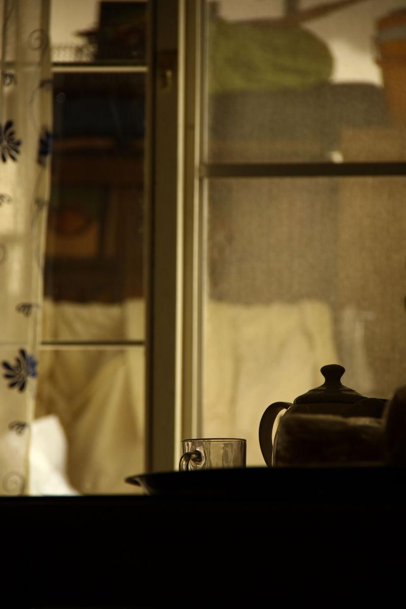 tranquilizer window